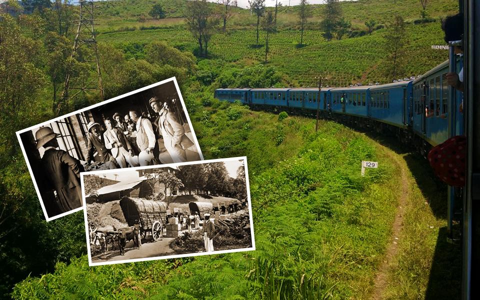 history of plantation in Sri Lanka